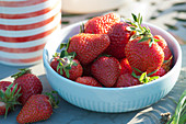 Schale mit frisch gepflückten Erdbeeren