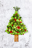 A Christmas Tree made from brussel sprouts and cinnamon sticks and decorated with ivy, berries and rosemary