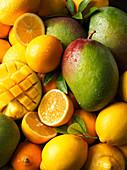 Mixed citrus fruits and mango