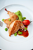 House chicks on a broad bean cream