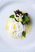 Burrata with elderflower vinaigrette and lemon balm