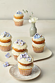 Wedding cupcakes with coconut lime cream