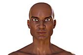 African man, illustration