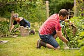 Couple harvesting vegetables in backyard summer garden