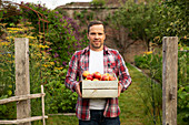 Proud man with crate of harvested apples in garden