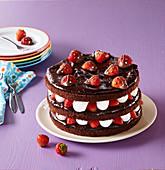 Chocolate cake (gateau) with ladybirds