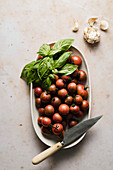 Cherry tomatoes in a bowl with basil and garlic
