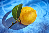 A lemon with stalk and a leaf attached
