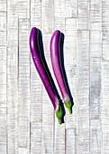 Snake aubergine
