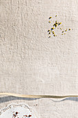Linen tablecloth, gold ribbon, chopped pistachios, crumbs, cake lace