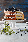 Layers of sponge cake layered with cream and blueberries