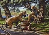 Barbourofelis fighting over Synthetoceras, illustration