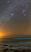 Winter stars and bioluminescent plankton, Persian Gulf, Iran