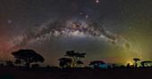 Milky Way arch over Acacia trees, Kenya