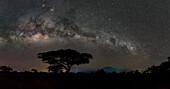 Milky Way band over Amboseli National Park, Kenya