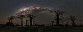 Milky Way arch over baobab trees, Madagascar