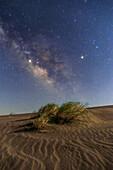 Milky Way over desert, Iran