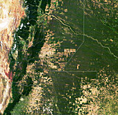 Deforestation in Gran Chaco, Argentina, satellite image