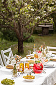 Table laid for special occasion in garden