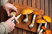 Hands preparing wild mushrooms