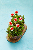 Mini toadstools made of tomatoes, basil and mozzarella (sugar-free)