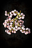 Frozen Pink Grapes