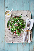 Rocket field salad with sorrel and radishes with Dijon mustard dressing