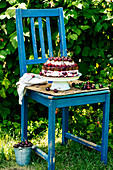 Chocolate cake with cherries and poppy seeds on a chair in the garden