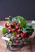 Strawberries in a small rustic basket