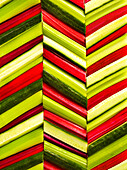 Green and red veggies laid out in a chevron or herringbone pattern filling the frame.