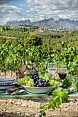 A wine still life in a vineyard
