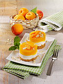 Sour cream and apricot tartlets