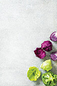 Baby cabbage - broccoli, white and red cabbage