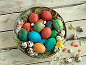 Coloured Easter eggs, quail eggs and chocolate eggs