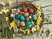 Colourful Easter eggs, sugar eggs and quail eggs in a willow wreath with daffodils