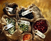 Selection of pulses