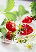 strawberries, strawberry leaves and flowers