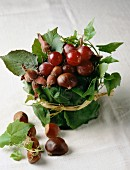 Chestnuts and grapes : table decoration