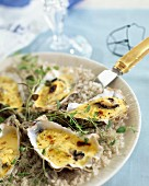hot champagne oysters