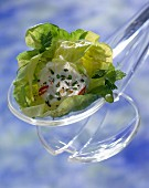 Lettuce with goat's cheese