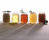 Fünf verschiedene Honigsorten im Glas mit den jeweiligen Geschmacks-Zutaten