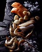 Selection of fish and shellfish