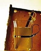 Glas mit Honig-Zimt-Drink