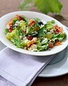 Grape picker's salad