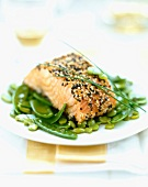 Salmon steak with sesame and poppy seeds