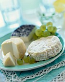 selection of cheeses with grapes