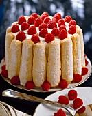 Raspberry charlotte dessert