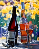 Selection of rosé and red wine