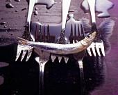 Fish forks for sardines