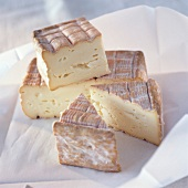 Angeschnittener Maroilles Käse auf Papier